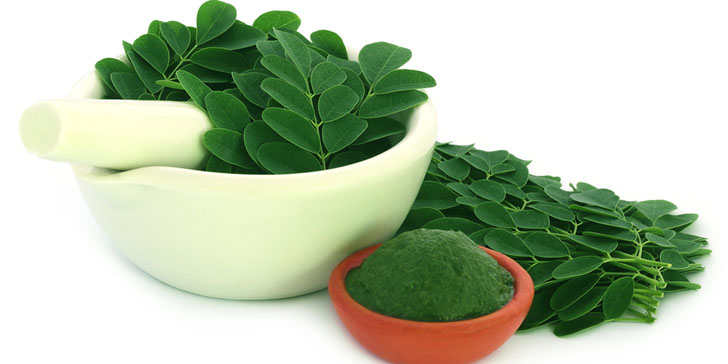 The 10 Biggest Benefits Of Drinking Moringa Daily